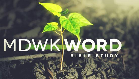 MidWeek Word